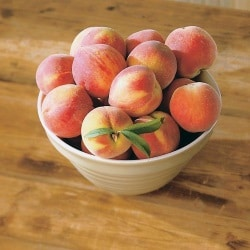 "Можно ли персики при кормлении грудью?</p><p> The benefits of peaches ""/></p></div><p>Will they benefit the mother and the body of the baby, and how much can they eat to avoid harm?</p><h2>The benefits of peaches when breastfeeding.</h2><p>Peaches belong to one of the hypoallergenic products, are used in the nutrition of nursing mothers and, later, in the lures of babies. And this is not casual: they have a delicate and juicy flesh, a unique flavor and aroma. In addition, peaches have many positive properties:</p><ul><li>– In peaches a lot of magnesium, calming the nervous system.</li><li>– They contain many fruit acids to stimulate digestion.</li><li>– They have a slight diuretic and laxative effect.</li><li>– They contain many vitamins and minerals.</li><li>– Peaches contain a lot of calcium, which is necessary for the skeleton of the mother and the baby.</li></ul><p><strong>But how to introduce them properly in the diet so that they do not have a negative impact on the child?</strong></p><p>However, you should not eat peaches every day and, in large quantities, when you include peaches in your diet, you should strictly control the baby's health and stools.</p><p>If family members are allergic to peaches, it is worth reserving them temporarily for a child over one year of age.</p>  <div style="
