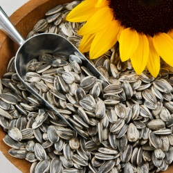 Is it possible for a nursing mother to eat seeds during breastfeeding?