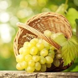 Можно ли кормящей маме виноград?