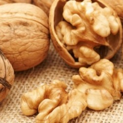 Nuts for nursing mothers: can you nurse the nuts, how many nuts can you eat?